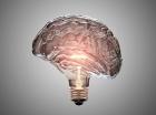 Աճեցված «մինիուղեղով» փորձում են պարզել դարերի գաղտնիքը
